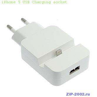 iPhone 5 USB Charging socket
